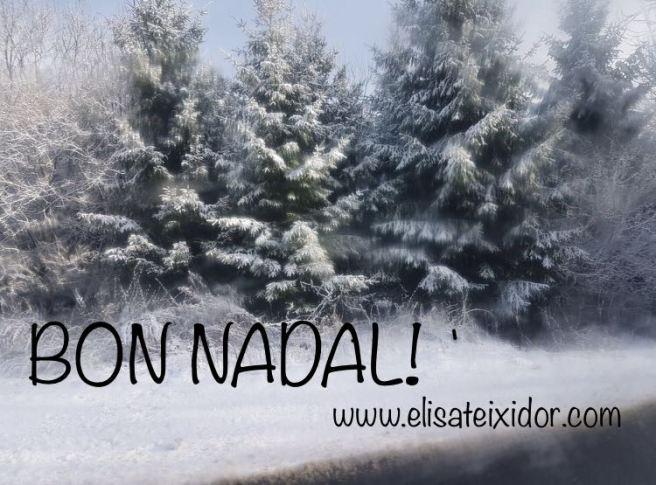 Nadal 2017